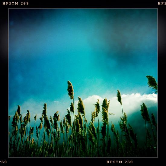 innovative photography - hipstamatic